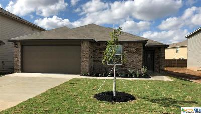 Seguin Single Family Home For Sale: 1013 Sandwell Court