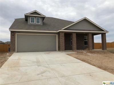 Seguin Single Family Home For Sale: 1009 Sandwell Court
