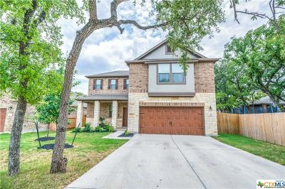 San Marcos Single Family Home For Sale: 309 Sky Springs Pass