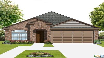 Seguin Single Family Home For Sale: 1016 Sandwell Court