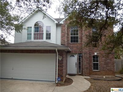Hays County Single Family Home For Sale: 1909 Ramona