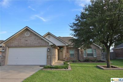 Belton Single Family Home For Sale: 520 Armstrong Drive