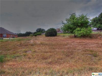 Belton Residential Lots & Land For Sale: 2705 Mystic Mountain
