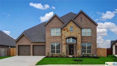 Seguin Single Family Home For Sale: 3017 Coral Sky