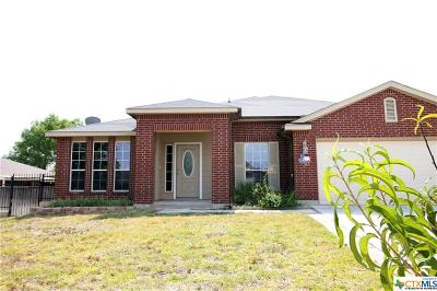 Harker Heights Single Family Home For Sale: 711 Tundra Drive