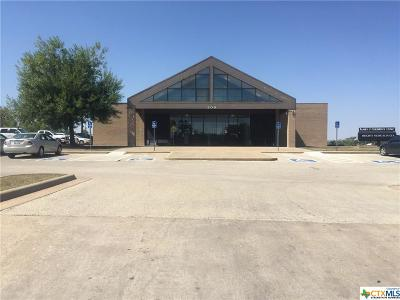 Harker Heights Commercial For Sale: 200 Nola Ruth