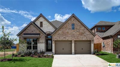 San Marcos TX Single Family Home For Sale: $279,900