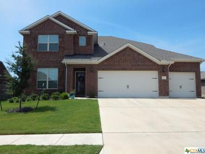 Killeen TX Single Family Home For Sale: $385,000