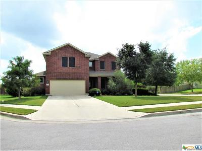 Kyle TX Single Family Home For Sale: $239,900