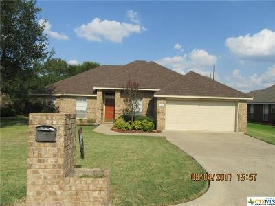 Belton Single Family Home For Sale: 2804 Kneese