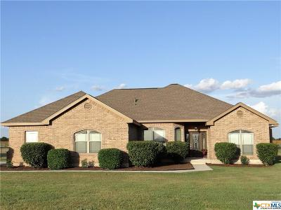 Seguin Single Family Home For Sale: 9557 Huber