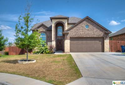 New Braunfels TX Single Family Home For Sale: $310,000