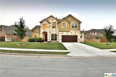 Round Rock Single Family Home For Sale: 2737 Belicia