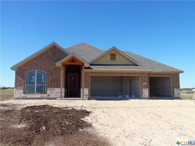 Salado TX Single Family Home For Sale: $318,000