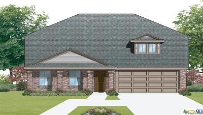 Seguin Single Family Home For Sale: 1040 Sandwell Court