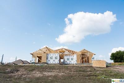 Salado Single Family Home For Sale: 253 Ranger Boulevard