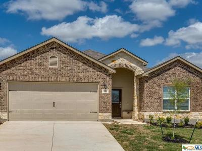 New Braunfels TX Single Family Home For Sale: $234,605