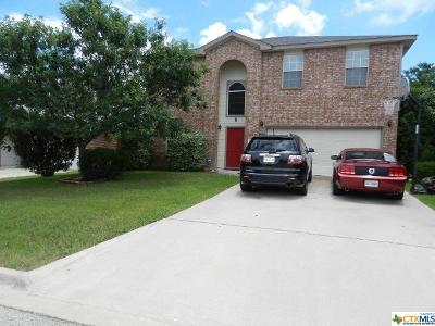 Harker Heights Single Family Home For Sale: 3040 Rain Dance Loop