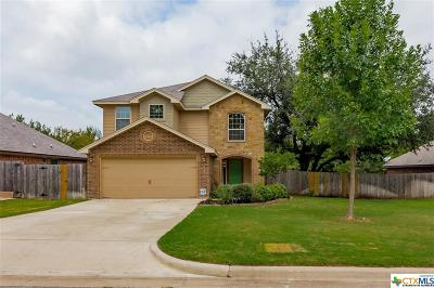 Belton Single Family Home For Sale: 602 Sage Brush