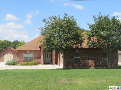 Seguin Single Family Home For Sale: 335 Oak Springs