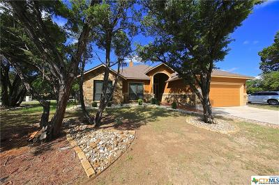 Wimberley TX Single Family Home For Sale: $339,900