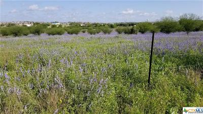 Cibolo Residential Lots & Land For Sale: 1841 Wiedner
