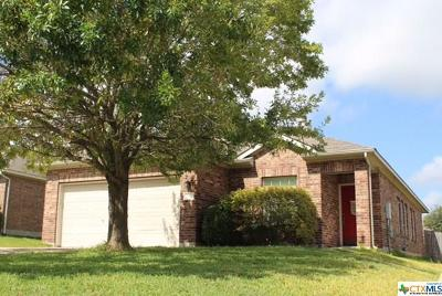 Kyle TX Single Family Home For Sale: $204,900