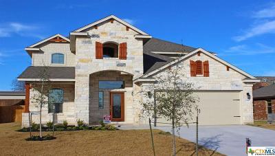 Temple Single Family Home For Sale: 1320 H K Allen