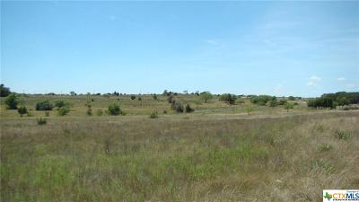 Lampasas Residential Lots & Land For Sale: Lot 3 580