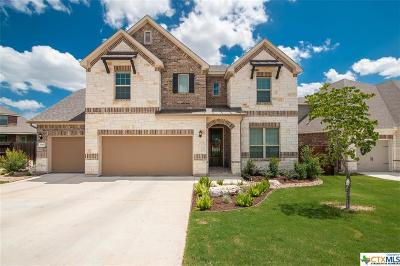 New Braunfels TX Single Family Home For Sale: $439,500