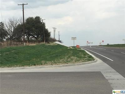 Belton Residential Lots & Land For Sale: 7900 Interstate 35 Expressway