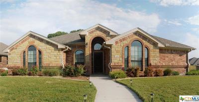 Killeen Single Family Home For Sale: 6102 Tanzanite