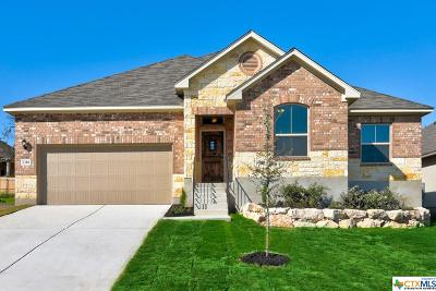 New Braunfels TX Single Family Home For Sale: $262,900