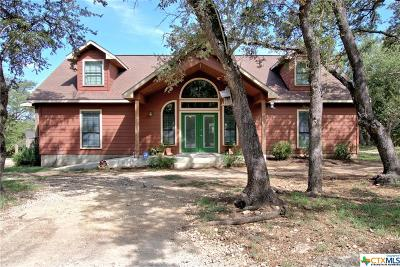 Wimberley Single Family Home For Sale: 300 Frontier Trail