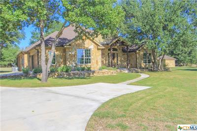 Harker Heights, Killeen, Nolanville, Salado Single Family Home For Sale: 2040 Mission Trail