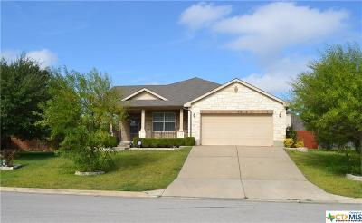 Harker Heights Single Family Home For Sale: 410 Chieftain Trail