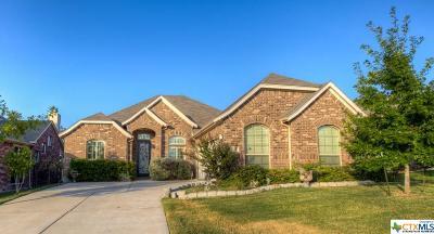 Schertz TX Single Family Home For Sale: $232,500
