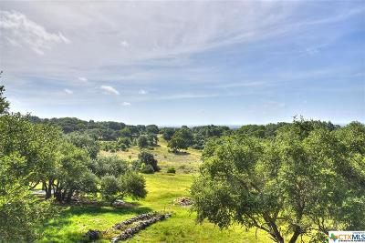 New Braunfels Single Family Home For Sale: 510 River Chase