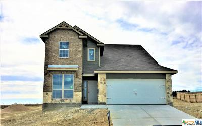 Killeen Single Family Home For Sale: 3416 Addison Street
