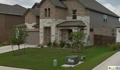 Buda Single Family Home For Sale: 234 Brockston Drive