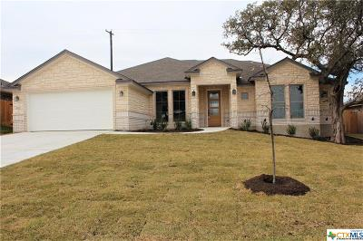Belton Single Family Home For Sale: 3029 Mystic Mountain