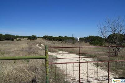 Lampasas Single Family Home For Sale: 2654 County Road 2268