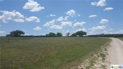Coryell County Single Family Home For Sale: 627 County Road 60