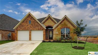 Seguin Single Family Home For Sale: 1953 Field Brook