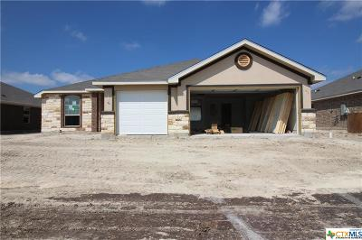 Bell County, Coryell County, Lampasas County Single Family Home For Sale: 6805 Catherine Drive