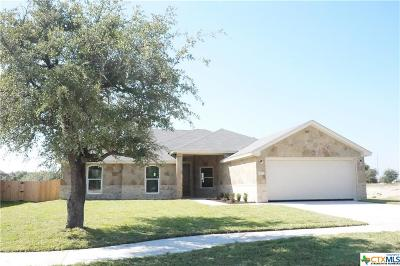 Bell County, Coryell County, Lampasas County Single Family Home For Sale: 10107 Taylor Renee Drive