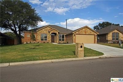 Belton Single Family Home For Sale: 2921 Mystic Mountain