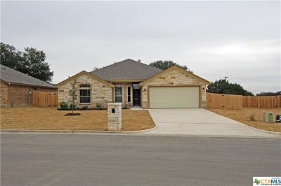 Belton Single Family Home For Sale: 2924 Presidio Circle