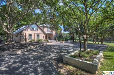 New Braunfels Single Family Home For Sale: 220 Lark Lane