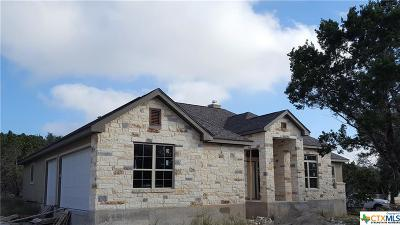 New Braunfels Single Family Home For Sale: 229 Longwood Drive